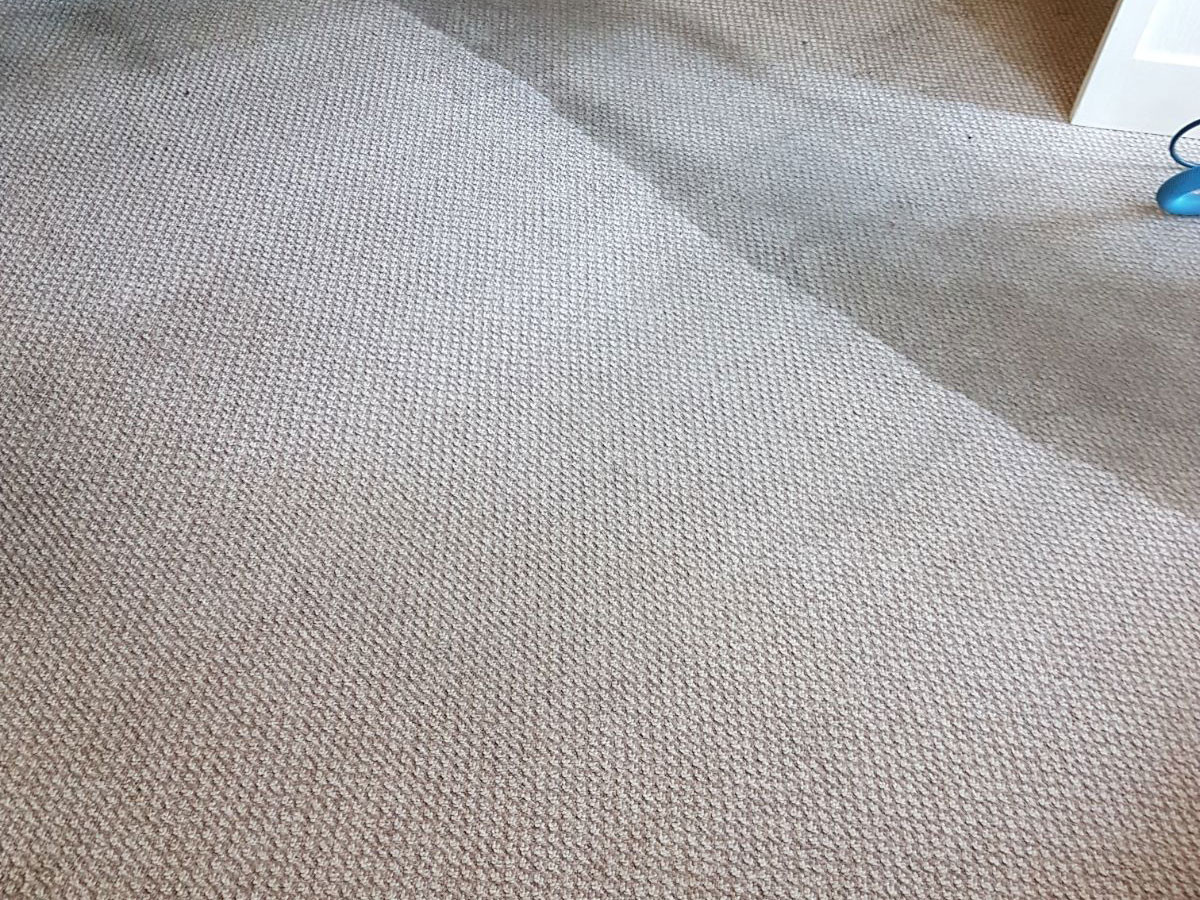 Carpet being cleaned in Lancaster area